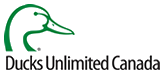 ducks-unlmimted-logo-footerv2